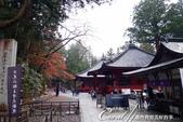 紅葉飄飄15日東京自由行--大猷院:●大猶院貴為國寶,並且緊鄰世界遺産日光二荒山神社,卻也沒有因此吸引大批觀光客,讓人意外.JPG