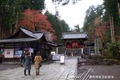 紅葉飄飄15日東京自由行--大猷院:●來到仁王門前,先到拜觀券受付所買張門票.JPG