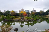 紅葉飄飄15日東京自由行--清澄庭園一眼看不完的池畔風情:03.JPG