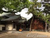 2017初夏14日自由行:●本殿四週的景色02.JPG