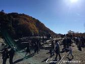 紅葉飄飄15日東京自由行--長瀞泛舟:33●上岸後,立馬跟著人群躍上岩石享風光02.JPG