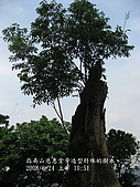 20080624指南宮:IMG_0677.jpg