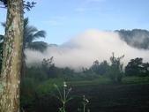 珈雅瑪部落、福山步道:DSC01776 [桌面的解析度].JPG