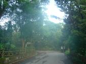 珈雅瑪部落、福山步道:DSC01779 [桌面的解析度].JPG