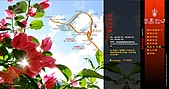 CY DESIGN (花園紅了):info / map page 1