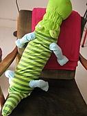 2009.Feb Valentine:ikea 買的可愛鱷魚給自己當VD禮物