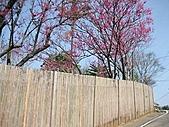 2009.Feb Valentine:與川宏陽明山勘景
