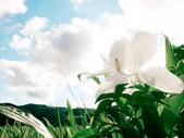 20110818-半個恆春半島:20110818-40.jpg