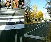 20101113-Hokkaido (6):20101113-11.jpg