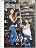 大鋅製網,點焊鋼絲網,點焊網規格:大鋅製網,點焊鋼絲網,點焊網規格