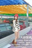 鍍鋅菱形網,PVC鍍鋅菱形網,菱形網價格,大鋅製網.:PVC鍍鋅菱形網,菱形網價格,大鋅製網 (10).jpg
