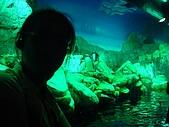 2007.07.02~07.06 OSAKA:07.05:DSC02953.jpg