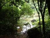 新北市福隆 福卯古道南線 隆隆山:P5120016.JPG