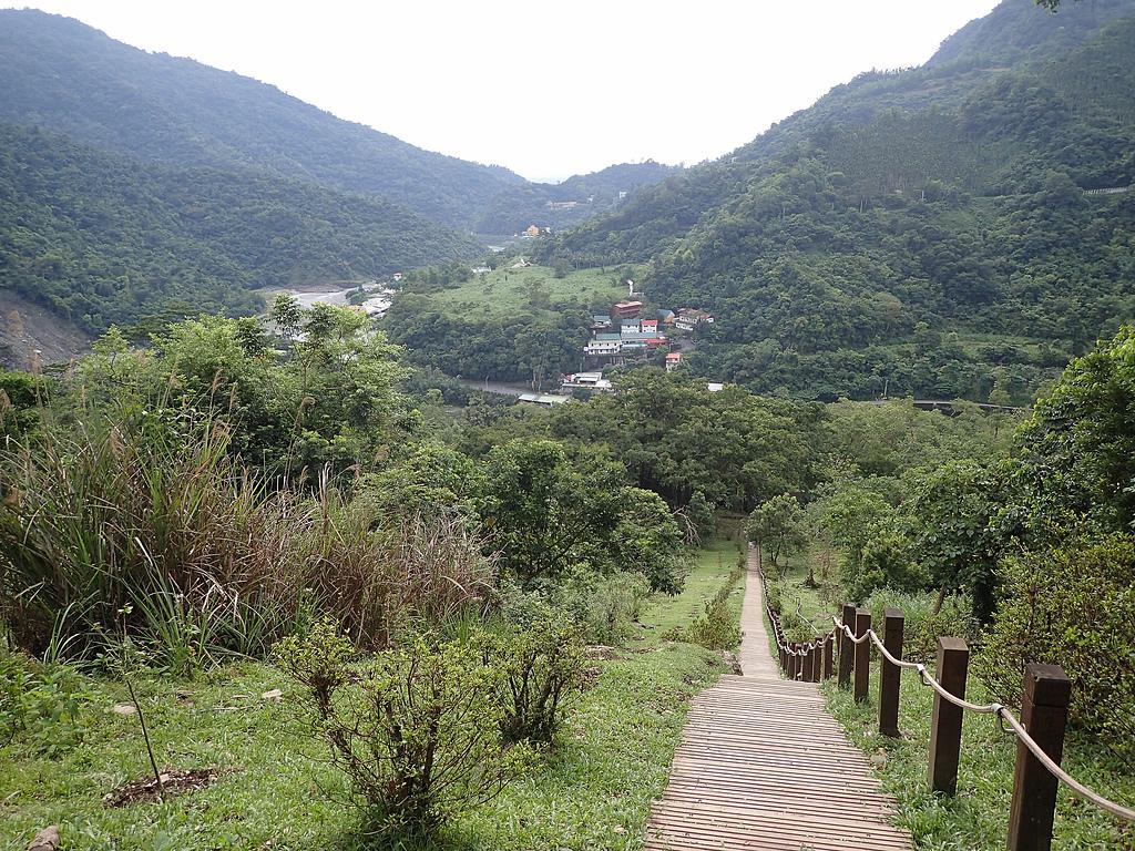 台東知本國家森林步道:P5260018.JPG