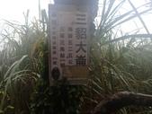 新北市瑞芳 侯硐火車站 三貂大崙 三貂嶺山 金字碑古道:P9030010.JPG