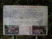 2019-03-10 新北市石碇 四分子古道:P3100038.JPG