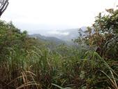 平湖環峰:P3240022.JPG