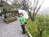 基隆 紅淡山東南峰 紅淡山 金交椅山O行走:DSCF6226.JPG