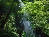 2017-07-09  新北市三峽 飛龍瀑布 阿花瀑布 雲森瀑布:DSCF7378.JPG