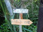新北市福隆 福卯古道南線 隆隆山:P5120002.JPG