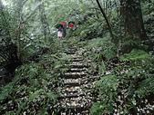 新北市三峽 紫薇環山步道:P4120017.JPG