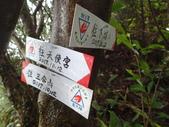 2017-10-12 新北市汐止 天使宮登下坡山8字行走:PA120017.JPG