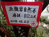 新北市五堵 五七縱走:P2220080.JPG