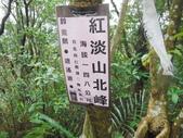 基隆 紅淡山東南峰 紅淡山 金交椅山O行走:DSCF6230.JPG