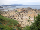 基隆和平島步道:P6090025.JPG