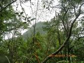 小粗坑山:IMGP3869[1].JPG