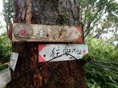 淡水 山仔頂古道 向天池山 二子山東峰 西峰 小天梯步道O行:PB050028.JPG