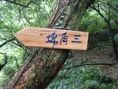 新北市福隆 福卯古道南線 隆隆山:P5120017.JPG