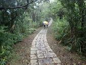 平湖環峰:P3240025.JPG