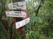 平湖環峰:P3240031.JPG
