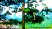 風景:照片20121030 054
