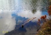 風景:平板20121216_西天池003