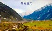 風景:照片 1838.jpg
