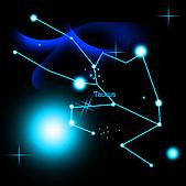 星座圖:金牛座.jpg