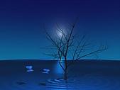 風景照片:2.jpg