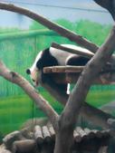 動物園:DSCN0025.jpg