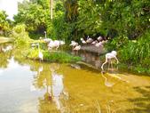 動物園:DSCN0004.jpg