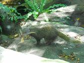 動物園:DSCN0041.jpg