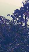 遊記照片:C360_2014-11-03-12-49-26-747.jpg