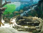 動物園:DSCN0023.jpg