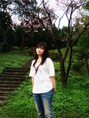 陽明山花季:DSC08497.JPG
