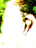 陽明山花季:DSC08513.JPG