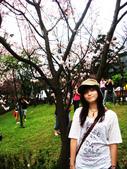 陽明山花季:DSC08520.JPG