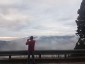 2017過年記遊:新竹觀霧賞雲趣:20170131過年出遊(新竹檜山巨木步道神木段)17.jpg