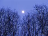 落日系列:冬天五.jpg