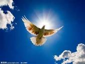 網路的圖片:白雲1.jpg
